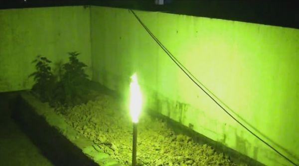Bengalfackel Grün T1 - 3 min. Brenndauer