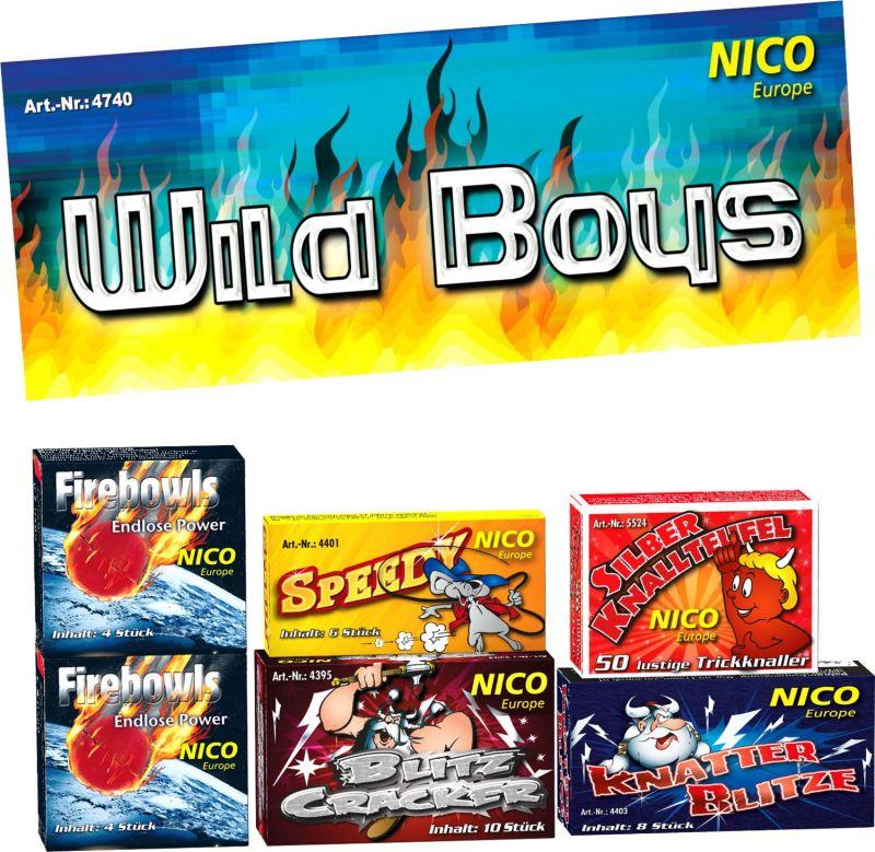 Nico Wild Boys Feuerwerk Sortiment 6 Schachteln - F1