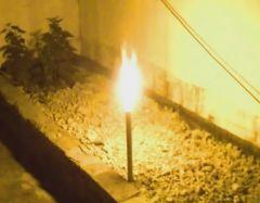 Bodenfeuerwerk Bengalfackel Gelb T1 - 3 min. Brenndauer