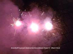 Broeckhoff Feuerwerk Bodenwirbel Groundbloom Flower 20 Stück - F1